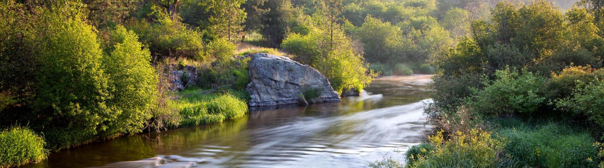 hero image- Little Spokane River