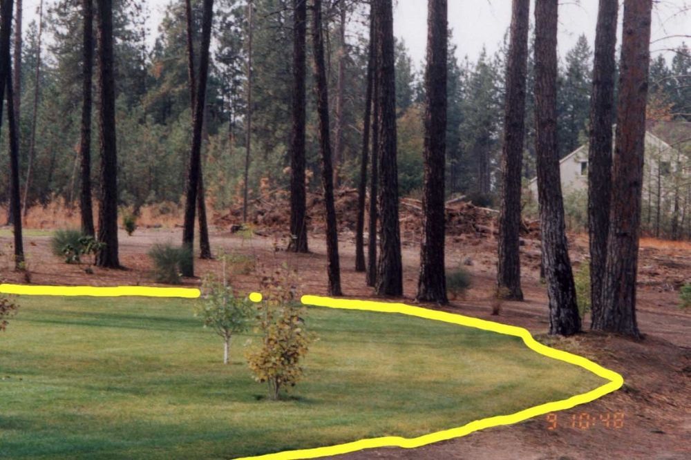 Photo showing the difference between improved and unimproved property line.