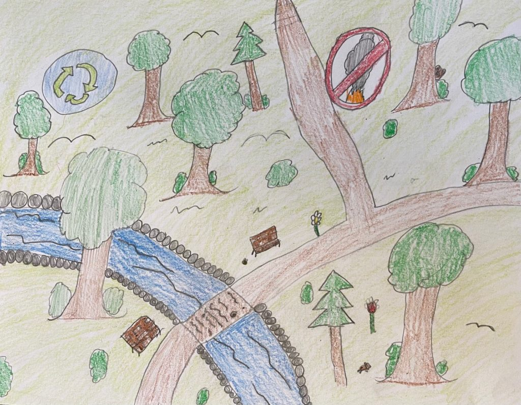Kids drawing of trees